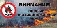 с 8-00 часов 10 апреля до 8-00 часов 15 июня 2019 года установлен особый противопожарный режим на территории Иркутской области