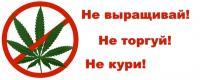 Уничтожение наркосодержащих растений на территории Балтуринского МО